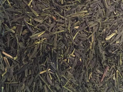 Sencha Kyoto Tea