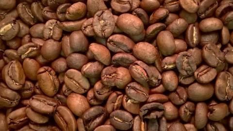 Sumatra by The Coffee Roaster